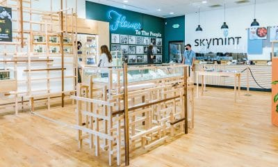 Nunica-Store interior