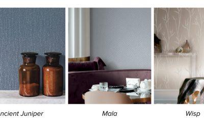 Aviva Stanoff collections